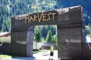 2016-08-13_HarVest_046