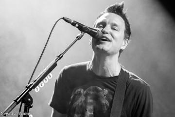 Mark Hoppus von Blink 182 (Nicola Tröhler)