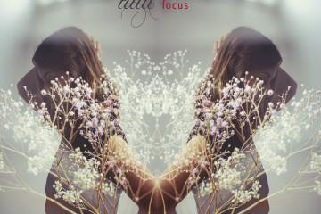 Tilia – focus (Bild: zVg)